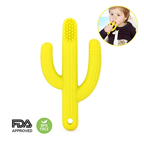 - TTLIFE Cactus Teether Toy Bpa Free for Baby Food Grade Silicone Easy to Hold Training Pacifier Clip Yellow