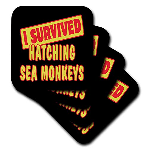 3dRose Dooni Designs Survive Sayings - I Survived Hatching Sea Monkeys Survial Pride And Humor Design - set of 8 Coasters - Soft (cst_117997_2)