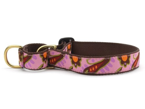 Up Country Lush Paisley Martingale Dog Collar X- Large Brown, Orange, Purple