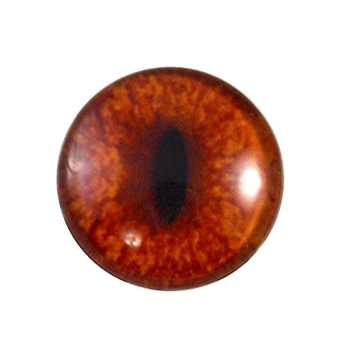 25mm Single Red Fox Glass Eye for Taxidermy Sculptures or Jewelry Making Pendants Crafts Art Doll Wire Wrapping DIY Flatback (Fox Eyes)