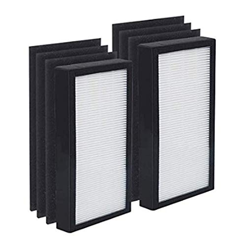 JUNHUI Premium 2 HEPA Filters and 6 Pack of Pre-Filters Compatible with Air Purifier Models AC4100 and Replacement FLT4100 Filter EAC4100CA AC4150BL AC4150PCA AC4150PC Air Purifier Part Number FLT11CB -  MB316-FRANK