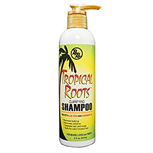 6. Tropical Roots Clarifying Shampoo by Broner Brothers (8 Oz.)
