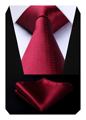 BIYINI Mens Polka Dot Tie Handkerchief Jacquard Woven Classic Mens Necktie & Pocket Square Set