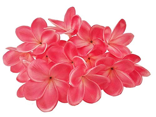 - BABYHYY 10 Stems Real Touch Artificial Hawaiian Lei Faux Ivory Plumeria Latex Flower Bouquet for Bride Wedding Party Festival Decoration Bouquet (Red)