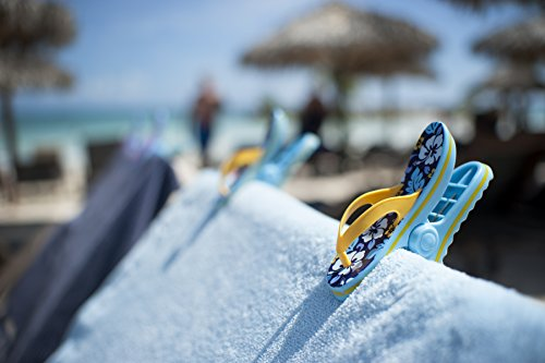 1d7fbc5cec96 Beach towel  Boca  Clips - 2 PAIRS - 1 pair of PARROTS   1 pair of ...