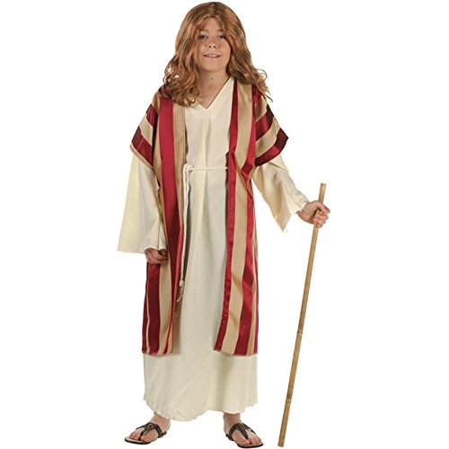 Boy's Deluxe Moses Costume (Size: Small 4-6) by RG Costumes