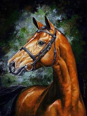 JynXos Wooden Framed Paint By Number Horses Linen Canvas DIY Painting - Handsome Horse