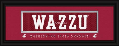 Washington State University Cougars