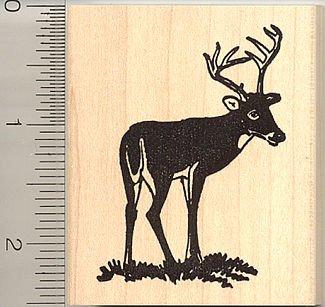 Amazon Buck Deer Rubber Stamp