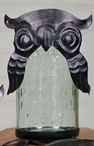 Solar Owl Kit for a Pint Mason Jar by Simply Homemade
