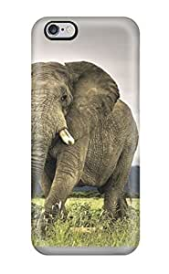 Excellent Iphone 6 Plus Case Tpu Cover Back Skin Protector Elephant Animal Elephant