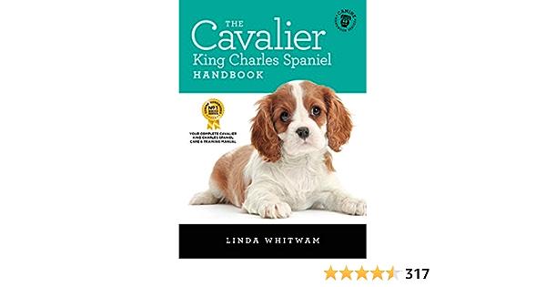 Site ul gratuit de dating Cavalier