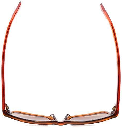 Orange L683s Lacoste Havana L683s Sunglasses Lacoste Lacoste Sunglasses Havana Orange Sunglasses qwfzrCIw
