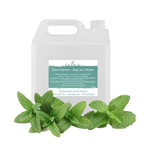 Nuages aux 2 Menthes 5000ml - mélange pour HAMMAM à base d'Huiles Essentielles 100% pures et naturelles Huiles et Bien-être