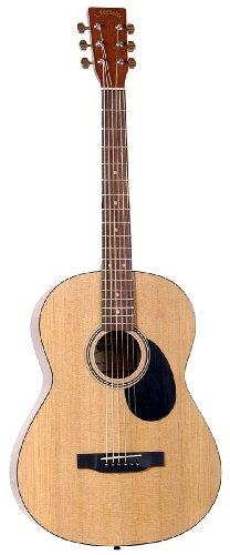 J Reynolds Jレイノルズ JR45 39-Inch アコースティックギター アコースティックギター アコギ ギター (並行輸入) B001L8MDBE