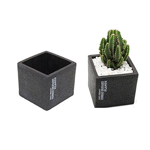 Purzest Industrial Smooth 3.8 inch Square Favor Flower Pots, Black Cement, Set of 2