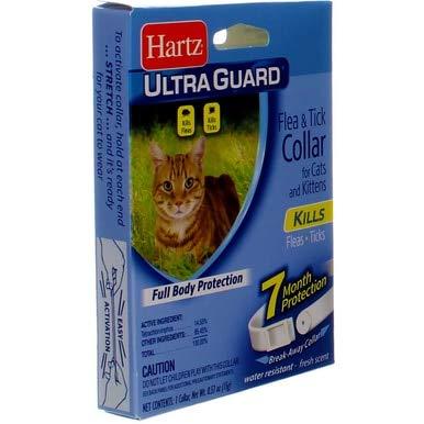 Hartz UltraGuard Flea Tick Kitten Collar, White