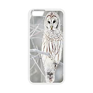 """Custom Colorful Case for Iphone6 Plus 5.5"""", Owl Cover Case - HL-712495"""