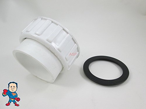 Threaded Slip Spa Union Gasket product image