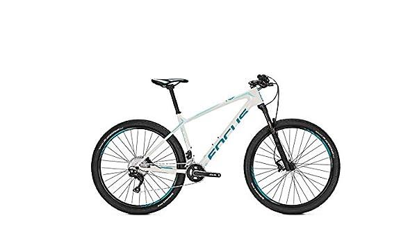 Focus MTB Raven Elite Donna 22G - Bicicleta de montaña (27,5 ...