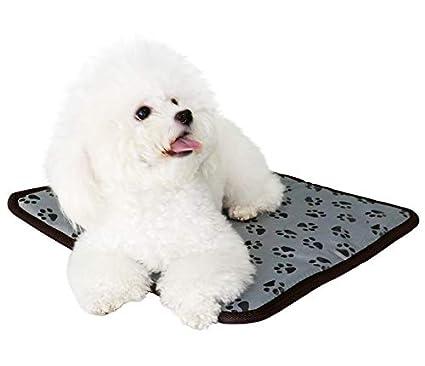 Cuscinetto riscaldante per Animali Domestici con Design Anti-morso e Impermeabile con Coperta sostituibile in Feltro Pulilang Animal Coperta Riscaldante con Sistema di Controllo della Temperatura