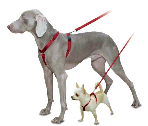 petsafe surefit dog harness 3 4 small red price reviews user ratings comparisons at. Black Bedroom Furniture Sets. Home Design Ideas
