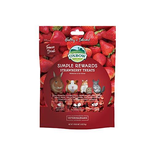 Oxbow SIMPLE REWARDS STRAWBERRY Small Animal Treat 0.5 oz (Best Tasting Strawberry Varieties)