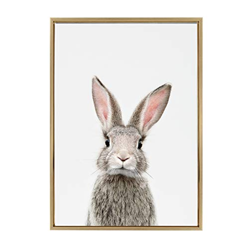 (Kate and Laurel Sylvie Female Baby Bunny Rabbit Animal Print Portrait Framed Canvas Wall Art by Amy Peterson, 23x33 Gold)