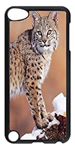Animals 156 PC Case Cover for iPod Touch 5 Transparent wangjiang maoyi