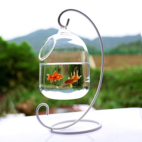 Water Hep Fish Bowl 15cm Height Hanging Glass Aquarium Fish Bowl Fish Tank Flower Plant Vase with 23cm Height White Rack Fishbowls (White)