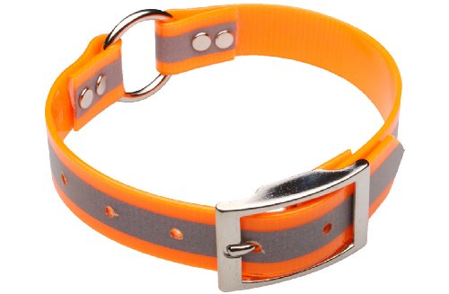 Premier Nite Lite Day-Glo Collar with Reflective Strip in Blaze Orange, Ring in Center, 3/4-Inch by 16-Inch, My Pet Supplies