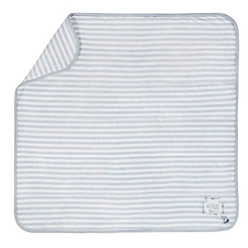 Gerber Organic 2-Ply Blanket, Grey Stripe, One Size