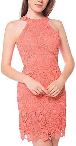 Women's Casual Halter Neck Party Lace Mini Dress Sexy Sleeveless Crochet Knit Straight Pencil Outfits for Cocktail Night Zipper