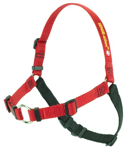 SENSE-ation No-Pull Dog Harness – Red with Black Medium/Large (Narrow), My Pet Supplies