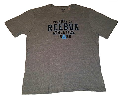 Reebok Men's Logo T-Shirt Big & Tall - Choose Color/Size Up To 6X (Heather Gray - Property of Logo, 4X)