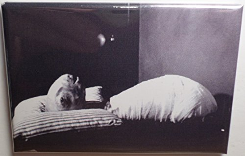 Eraserhead Movie Poster 2