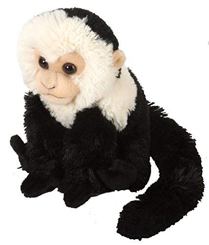 Wild Republic Capuchin Plush, Stuffed Animal, Plush Toy, Gifts for Kids, Cuddlekins 8 Inches