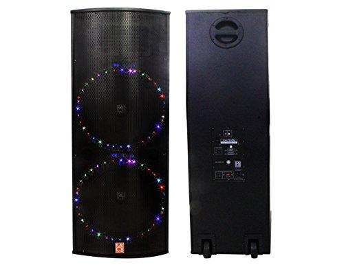Dual 15 Inch Speaker - 1