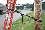 Ladder Cinch, Nylon