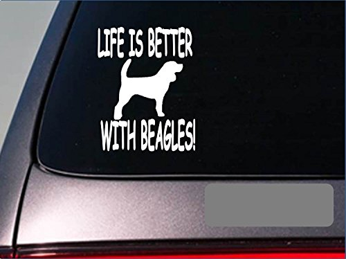 Life is better with beagle *F401* 6