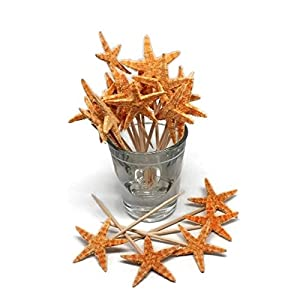 41HKeTCM%2BOL._SS300_ Top Rated Sets of Seashell Toothpicks