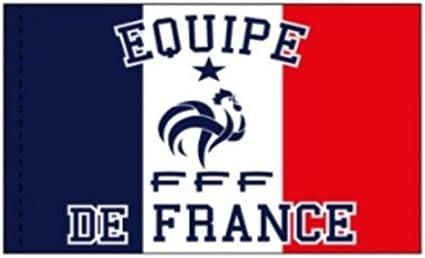 FFF - Bandera Oficial de la Federación Francesa de Fútbol, 70 x 100 cm: Amazon.es: Deportes y aire libre