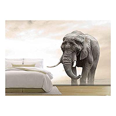 Marvelous Piece, Crafted to Perfection, African Elephant Male Walking Alone in Desert at Sunset