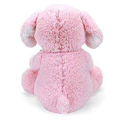 INTERACTIVE PUPPY PLUSH: Playful Peek-A-Boo Puppy features safe, soft embroidered eyes and movable arms holding a matching, pink satin-accented blanket that provides additional tactile play sensation.: Toys & Games
