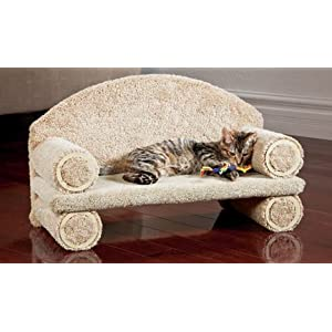 CLASSY KITTY Cat Couch, 25″ Assorted colors