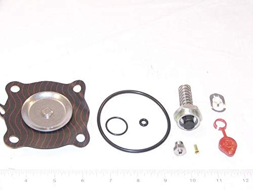 ASCO Power Technologies 302280 Asco rebuild kit for 8210AC series valves