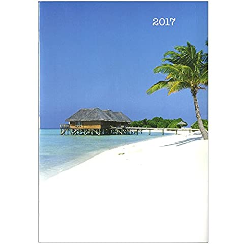 2017 Monthly Calendar Planner Organizer | Appointment Date Log Agenda Diary Journal Goals Dreams Accountability Book | 10 X 7 Hard Cover | Business School Fitness To Do List Time Management (Island)