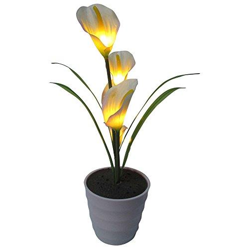 Zero Vase - 3