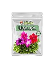 بذور زهرة البتونيا للزراعة المنزلية