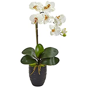 Nearly Natural Phalaenopsis Orchid in Black Vase, Cream 46